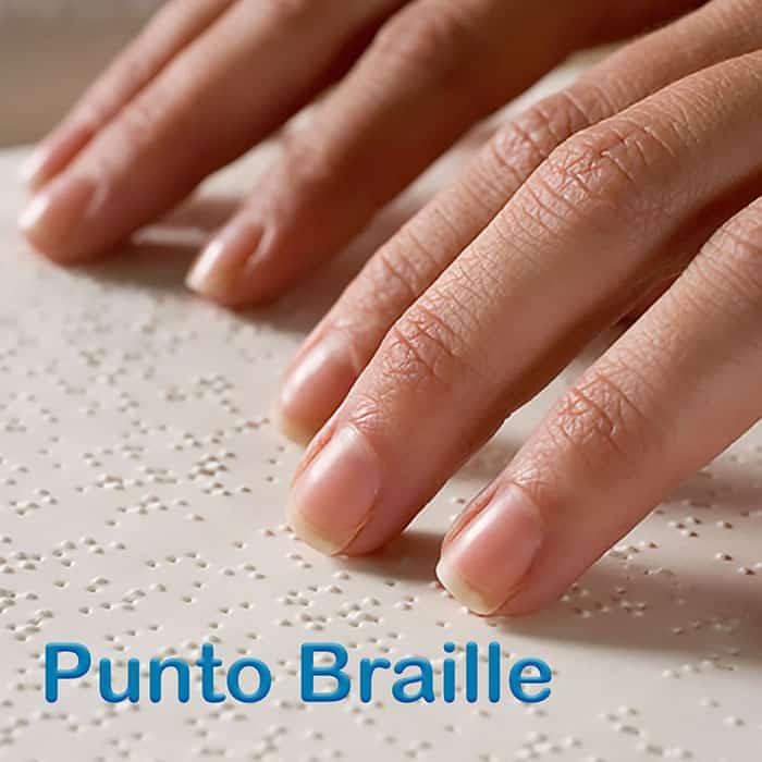 w_portfolio_braille